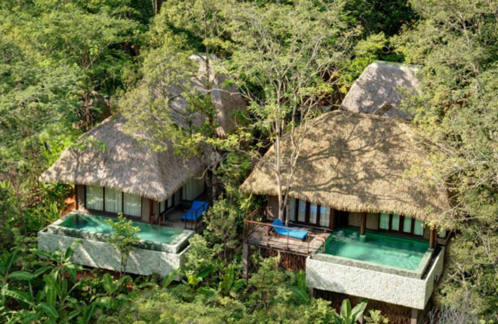 普吉岛海岛树屋