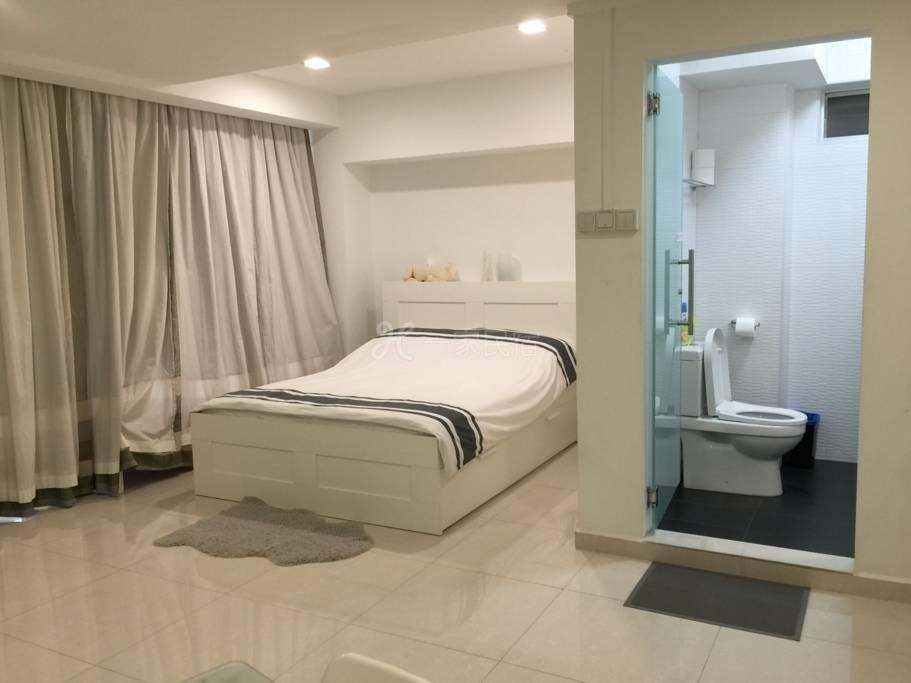 豪华宽敞的一室公寓