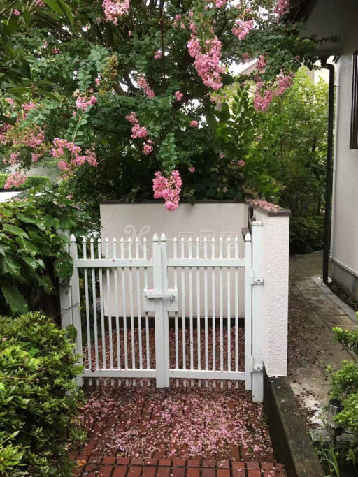 我们家住在东京都西部优静的生活小区。周围绿荫环绕,早晨小鸟啼鸣。